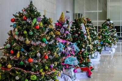 lobby trees